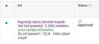 adwords-dynamic-parameters-jelena-rasula-4